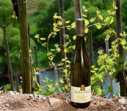 Weingut Rebenhof 2016 Ürziger Würzgarten Urglück Riesling Spätlese